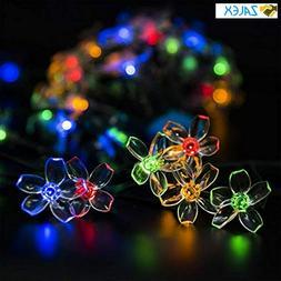 GIGALUMI 2 Pack Solar Strings Lights, Solar Fairy Lights 23