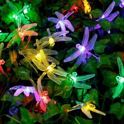 Qedertek Dragonfly Solar String Lights, 20Ft 30 Led Waterpro