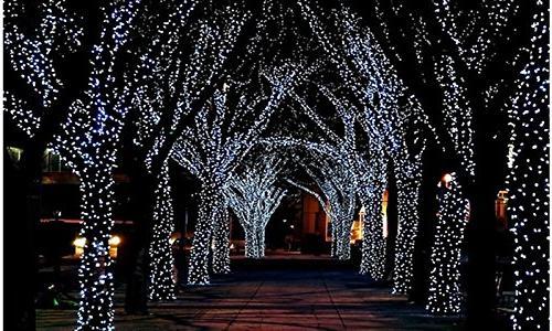 100 solar fairy lights