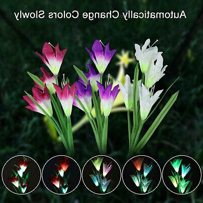 2 Pack Lights Multi-Color Lily Flowers For