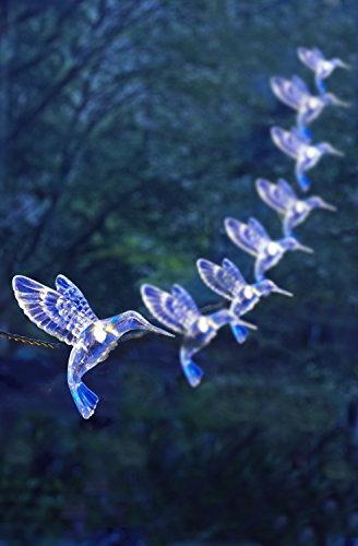 Moonrays Solar LED Hummingbird Lights