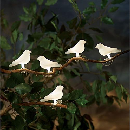 solar powered lighted birds light