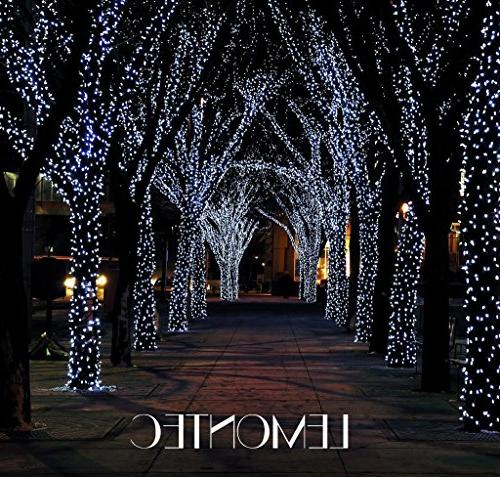 Lemontec 200 Lighting Outdoor Lights Chrismas Wedding Party Landscape, Pack