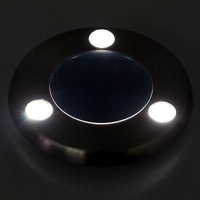 GreenLighting Stainless Light 8