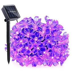 Qedertek Solar String Lights, 21ft 50 LED Fairy Flower Bloss