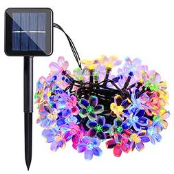 Qedertek Solar String Lights, 22ft 50 LED Waterproof Cherry